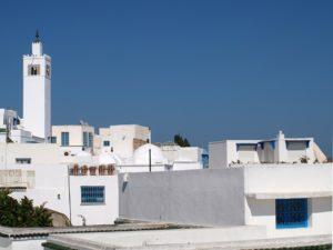 flygresor-tunis-tunisien-reseguide